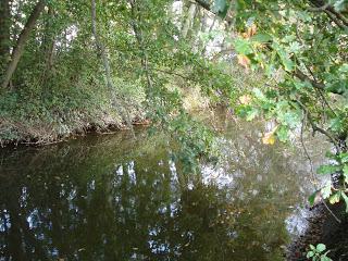 Peg-29-19th-Oct-2008